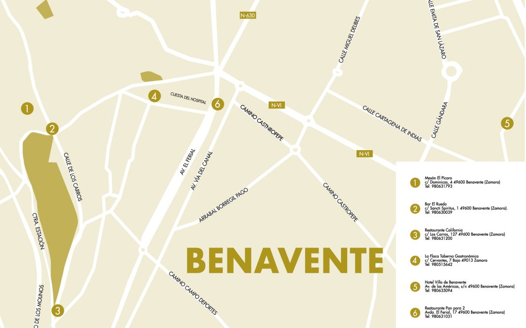 mapa-benavente